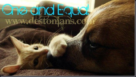 Dog and Cat - One and Equal - Life is here