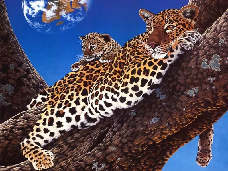 Leopard plus Baby.jpg